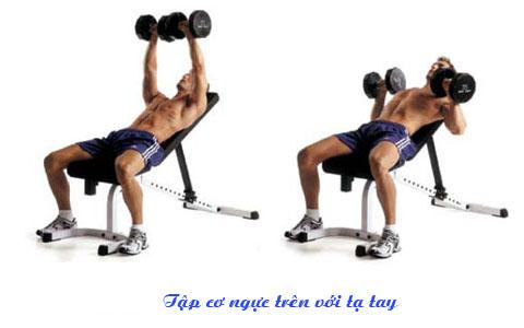 Bài tập cơ ngực trên với tạ tay kết hợpghế nghiêng.